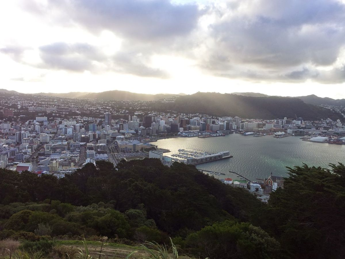 City Cityscape High Angle View Outdoors Rays Of Light Rays Of Sun Sun Water Wellington Harbour Wellingtonnz