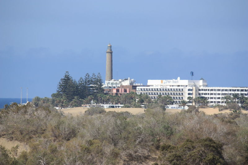 Faro de Maspalomas Architecture Building Exterior Built Structure Day Lighthouse Nature No People Outdoors Sky Tree in PLAYA DEL INGLES - GRAN CANARIA -