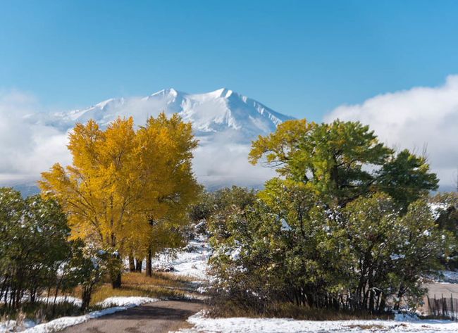 Autumn shaking hands with winter Autumn Colors Carbondale Colorado Lost In The Landscape Mount Sopris Beauty In Nature Cloud - Sky Cold Temperature Day Landscape Mountain Nature No People Outdoors Scenics Sky Snow Tranquil Scene Tranquility Tree Winter