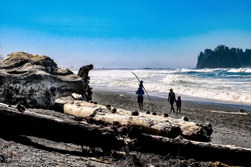 Rialto Beach Olympic National Park Sea Land Nature Beach Beauty In Nature Outdoors Wild Beach