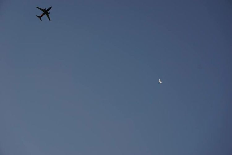 Airplane takes off right as the Moon begins fading away before Sunrise AirPlane ✈ Moonset Moon Shots FotosDeSWAO