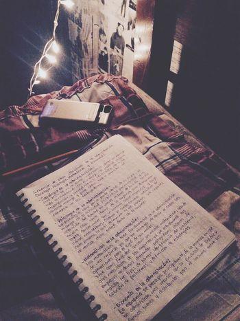 Homework Time Niht & Lights Book