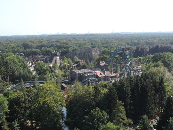 Beautiful Day Efteling ,the Netherlands Nature No People Outdoors Plants Tree