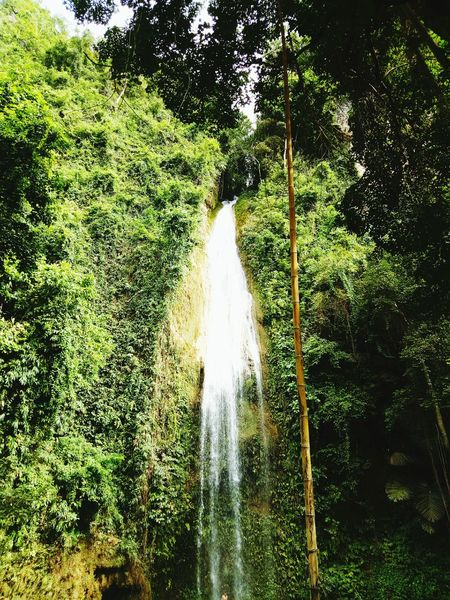 Water Nature Tree Beauty In Nature Green Color No People Splashing Spraying Outdoors Motion Day Freshness Waterfall Forest Adventure Freshness Swim Chasing Waterfalls Travel Destinations Waterfalls In Philippines Waterfalls💦 Waterfalls And Mountains