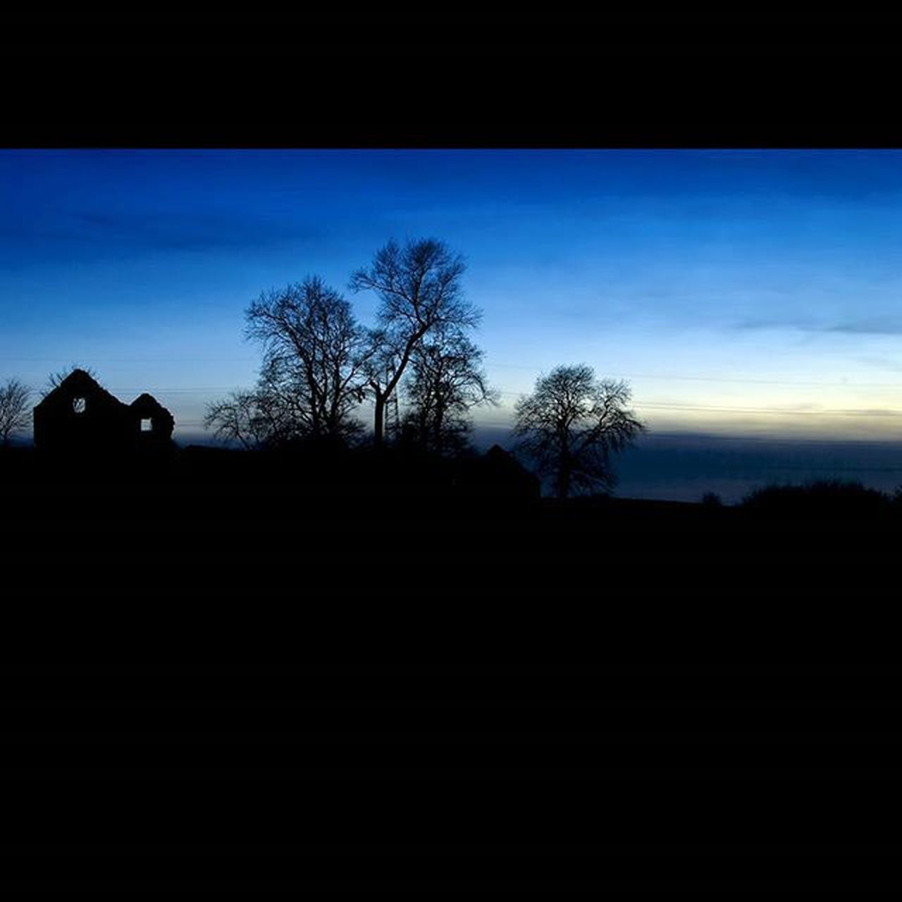 silhouette, tree, blue, sky, landscape, nature, outdoors, no people, scenics, bare tree, beauty in nature, day