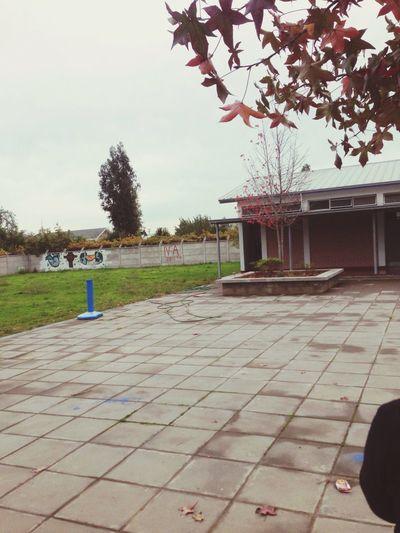 Autumn Day 💕💕 Autumn Colors Lovely School