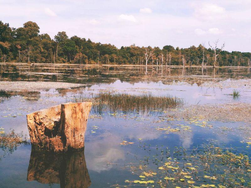 Lake Landscape Nature Reflection Neak Pean Angkor Wat Cambodia Angkor Wat, Cambodia EyeEmNewHere