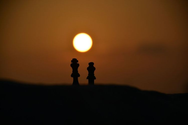 Two chess pieces on simple background