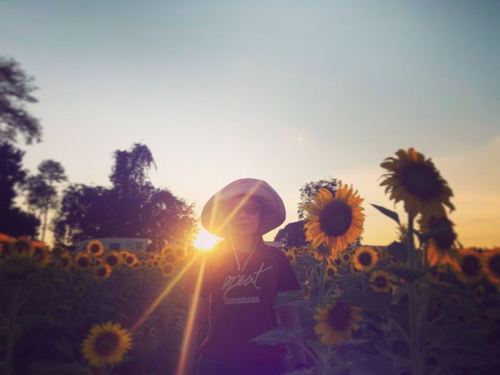 Asian woman standing on the sunflowers field on sunset twilight sky Plant Sky Real People Nature Lifestyles Flowering Plant Leisure Activity Sunset Flower Sunlight Growth One Person Field Beauty In Nature Lens Flare Land Women Standing Outdoors Sunflower