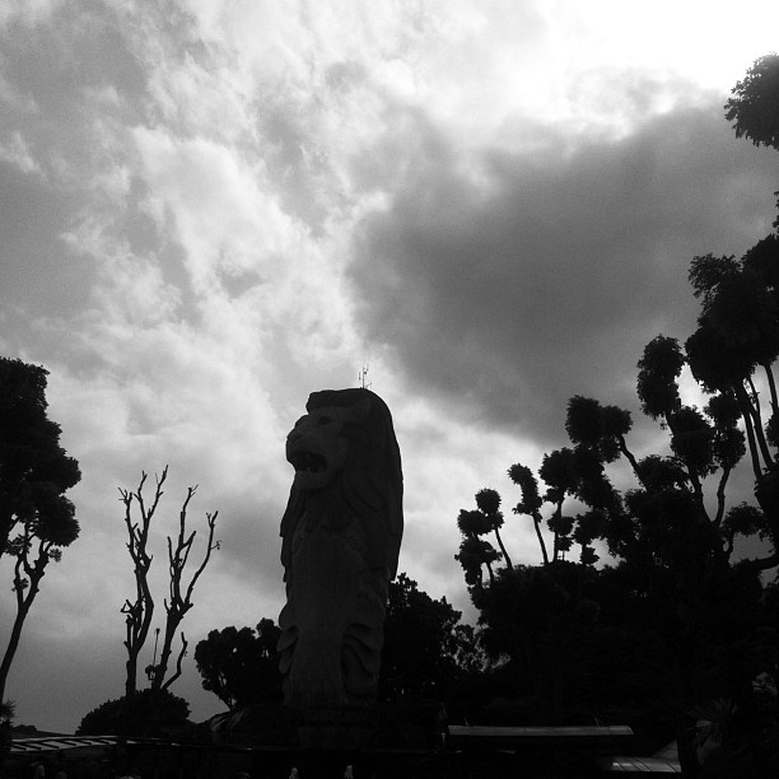 statue, sky, tree, sculpture, human representation, art and craft, art, cloud - sky, creativity, low angle view, silhouette, cloud, cloudy, nature, outdoors, growth, religion, day