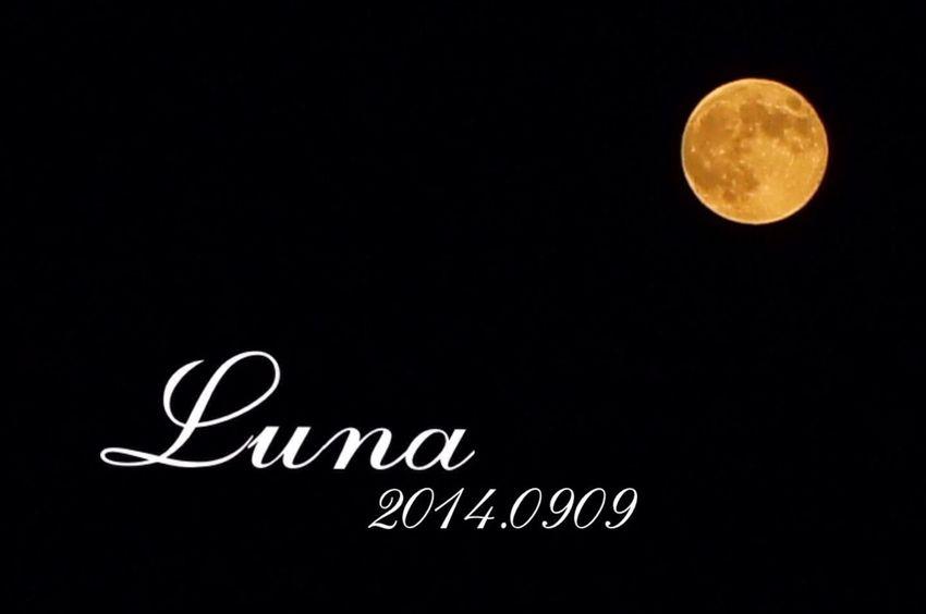 昨日のスーパームーン。三脚使うの面倒なので手持ち撮りです笑。 Super Moon 2014 Super Moon Luna Moon
