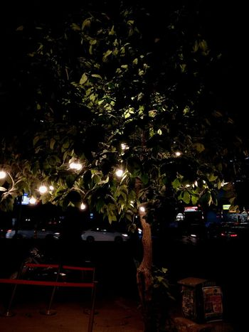 Tree Night Table Chair Illuminated Outdoors No People Shadow Nature City EyeEm Best Shots Lightning Hanging EyeEmNewHere EyeEm Selects