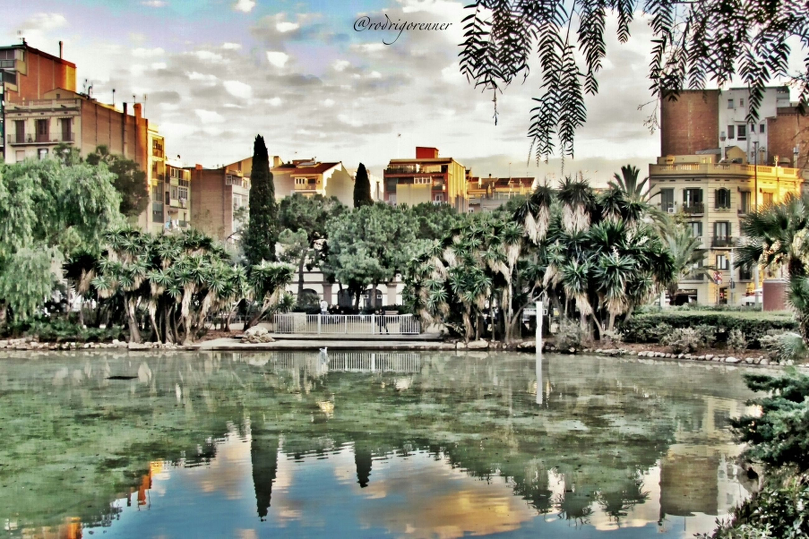 building exterior, architecture, water, tree, built structure, waterfront, reflection, palm tree, sky, city, river, pond, lake, cloud - sky, growth, residential building, cloud, building, nature, outdoors
