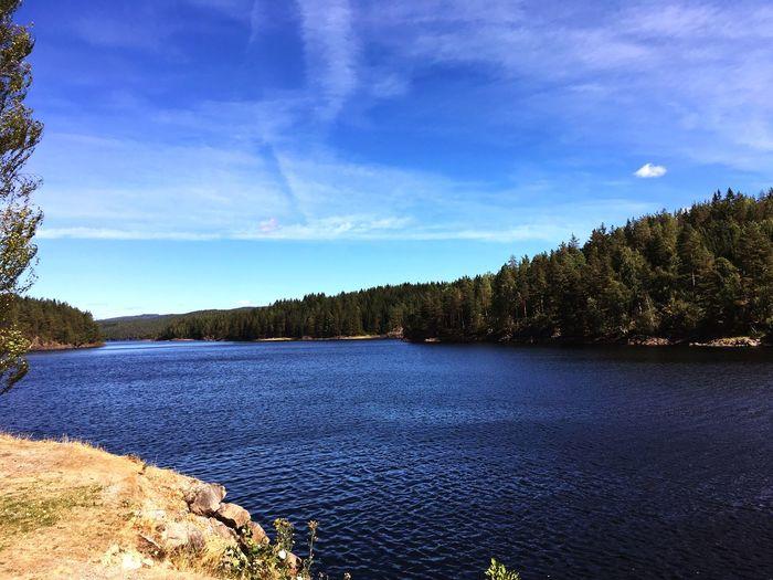 Norwegen, Trekkingtour, Outdoor Norway Norwegen Nature Tree Plant Tranquility Cloud - Sky Nature Lake Day No People Outdoors