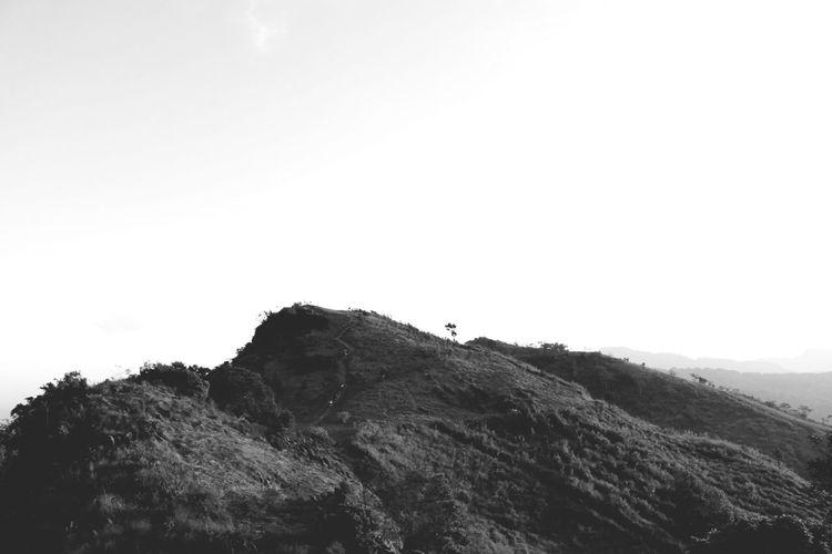 Mountian. Blackandwhite Black And White Black & White Mountain Sky Landscape Animal Themes
