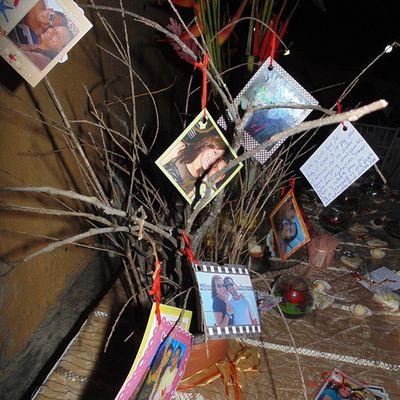 RL árbol del amor Matrimonio SanabriaMendoza