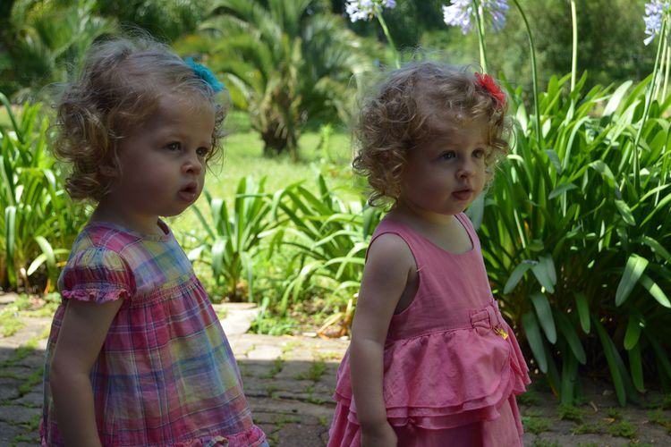 Sisters Girls Nature Real People Pink Gêmeas Twinsisters Happiness Blond Hair Children
