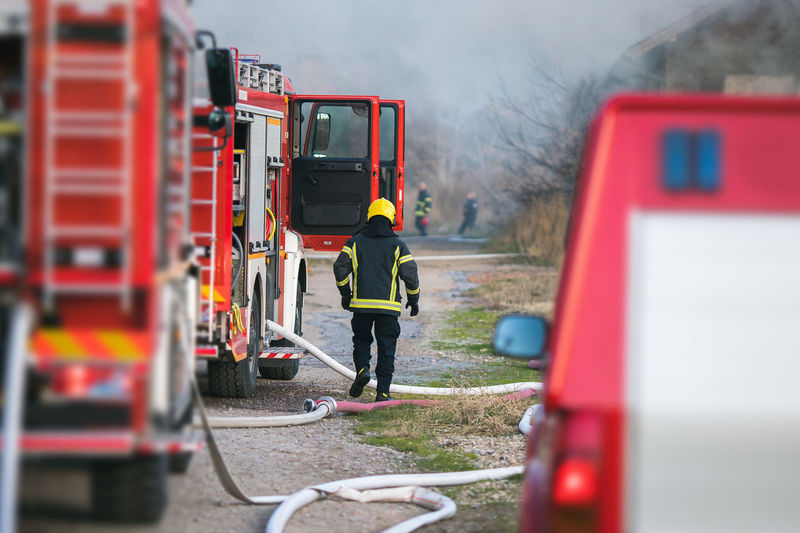 Rear view of firefighter in forest