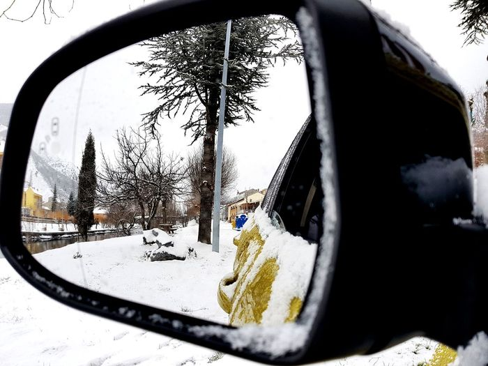 snow car reflect EyeEm Selects Snow Window Cold Temperature Car Day No People Tree Winter Outdoors Nature City Sky Close-up