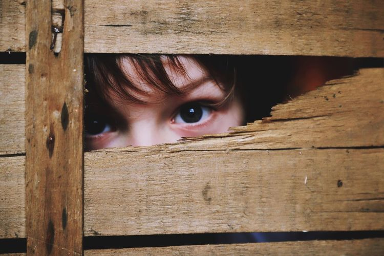 Cute Creative Portrait Creative Portrait One Person Withered  Eyes Boy Child Looking Through Box Wooden Box Wood - Material Childhood Peeking Human Eye Looking One Person Real People Close-up Day Indoors  Human Body Part Eyeball People Visual Creativity