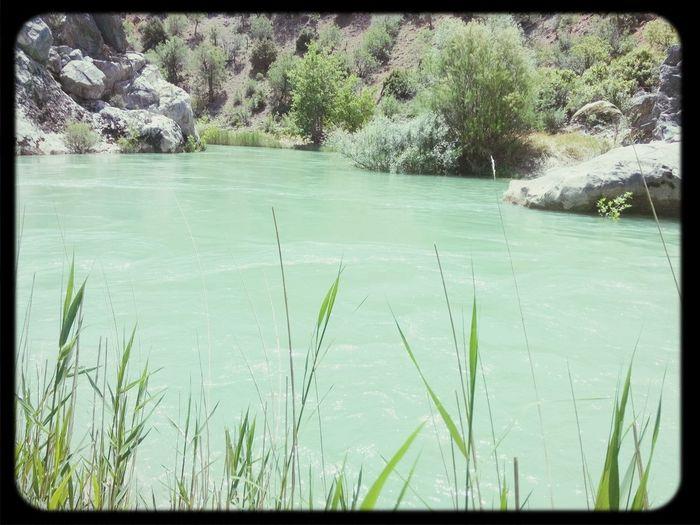 My Garden River Goksu