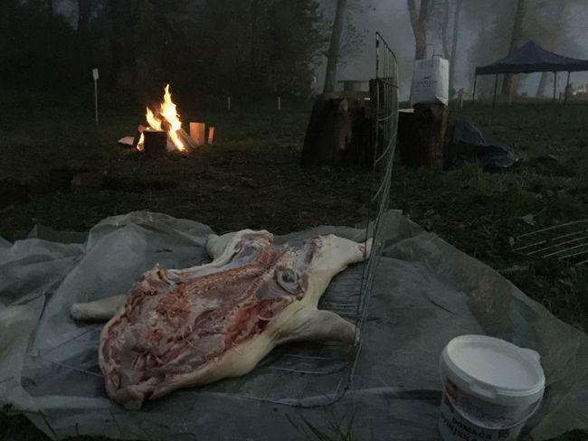 "Drugonagradjena ukopana Hawaii-Texas pecenka na regionalnom natjecanju ""Pecenkijada 2017"" u Slavonskom Brodu, Hrvatska. Zora, 6:37h, 14. listopada 2017. Slavonski Brod Croatia Pork Roast Pork Roast Food Meat Burning Flame Documentary Outdoors Bonfire Cooking"