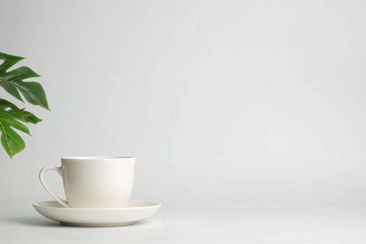 Copy Space Cup