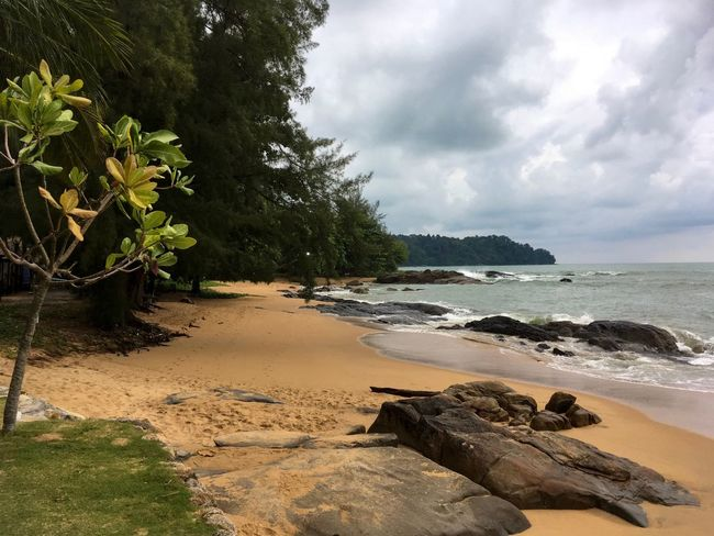 Rainy day Cloudy EyeEm Nature Lover Beach Beauty In Nature Cloud - Sky Day Horizon Over Water Kaolak Land Nature No People Outdoors Plant Rock Rock - Object Sand Scenics - Nature Sea Sky Solid Tranquil Scene Tranquility Tree Water