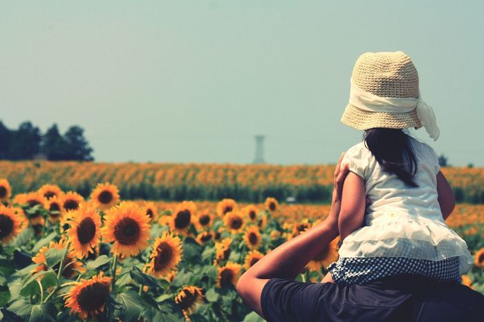 Summertime Flowers Around The World By Lufthansa Summer Sunflower Kids Family Love Angel Memories