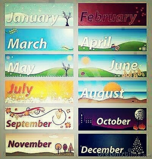 LMP IF YOU SEE YOUR MONTH