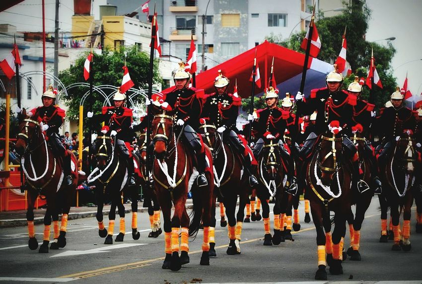 Brigada de caballeria del ejercito Peruano / Peruvian Cavalry brigade. I love this specially because is a militar band who plays up on the horses, while marching. Is one of my favorites too... Military Parade Cavalry Brigade Peruvian Parada Militar Desfile Militar Peruvian Army EyeEm Best Shots Eyeem People Sound Of Life Service Animals