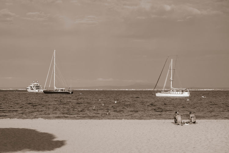 Black & White Leading Lines Beach Black And White Black And White Friday Day Horizon Over Water Light And Shade Mast Monochrome Nature Nautical Vessel Outdoors Sailboat Sailing Sailing Ship Sand Sea Shadow Sky Water Yacht
