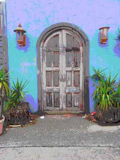 Architecture Building Exterior Built Structure Closed Day Door Entrance Entry Façade Mexican Style Doo Mission Doo No People Old Door Outdoors Plant Tree