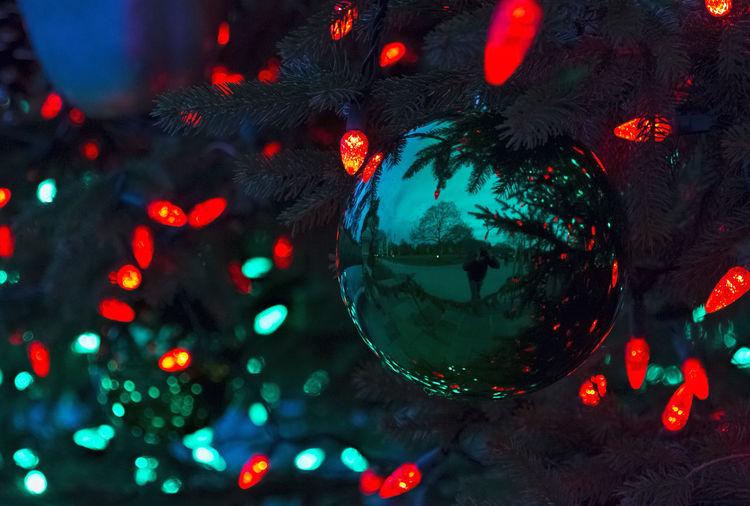 My Winter Favorites Best Christmas Lights Christmas Around The World LongwoodGardens