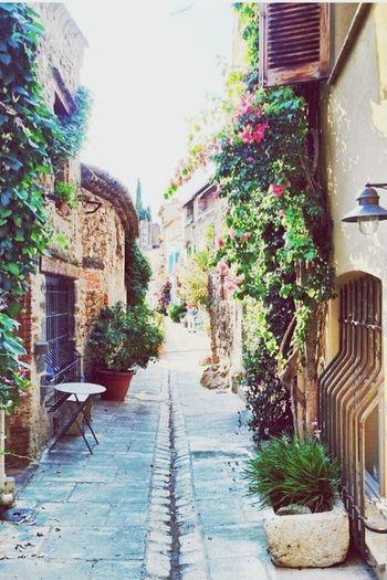 Grimaud Village France Sunnyday