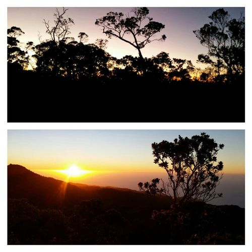 Sunset_collection Landscape Landscape_Collection Scenery Sunset Silhouette Sunset Silhouettes Scenic Getting Inspired How's The Weather Today?