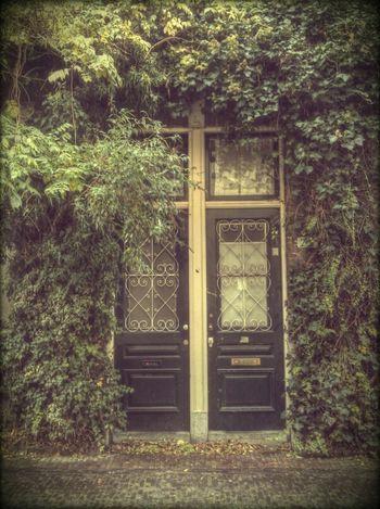 Hanging Out Streetphotography City Doors Door Deur