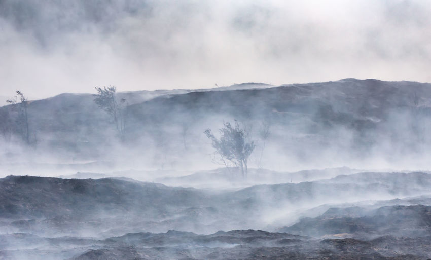 Scorched Earth Fire Morsum Cliff, Sylt Morsum-Kliff Smoke Sylt, Germany Heather Heide Abbrand Land Layers Of Smoke Morsum Kliff Nature No People Non-urban Scene Outdoors Power In Nature Scorched Earth Smoke - Physical Structure Smoldering Sylt