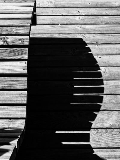 High angle view of wooden pier on footpath