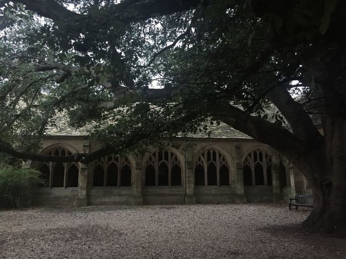 One of the beautiful Harry Potter Film Sets at Oxfor. Newcollege Oxford Arch Architecture Tree Built Structure Building Exterior No People Day Outdoors Stones Old