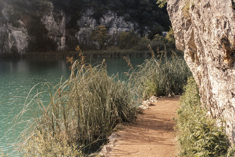 Hiking National Park Nature Beauty In Nature Day Direction Footpath Grass Growth Lake Land Nature No People Non-urban Scene Outdoors Plant Plitvice National Park Scenics - Nature The Way Forward Tourism Trail Tranquil Scene Tranquility Tree Water