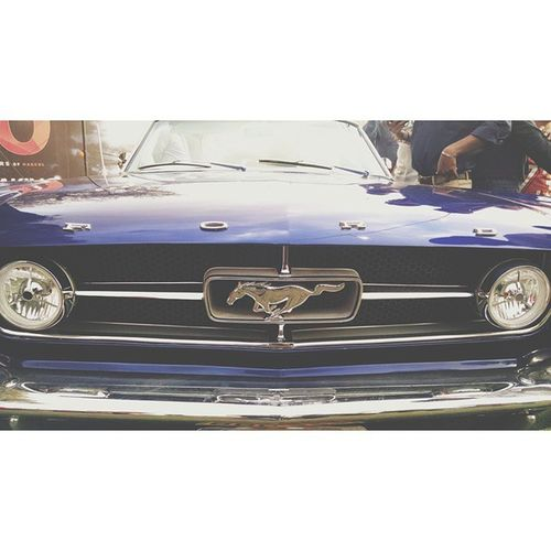 ⊙Men may or may not be better drivers than women, but they seem to die more often trying to prove that they are. ★Vintage Car Show 2015 (5/5)★ Ford GT Mustang 1965 VintageCarShow15 VCS15 VCCP VCCCP Vintagecarshow Karachi Mustang Ford Fordgt Fordmustang 1965