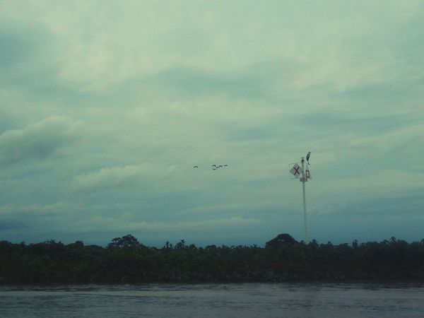 Sinalização Ms Mato Grosso Do Sul Agua EyeEm Selects Rio Paraguai Río Paraguay Brasil Marinha Do Brasil Airshow Vapor Trail Flying Airplane Tree Bird Air Vehicle Water Lake Sky Industrial Windmill Wind Power Windmill Alternative Energy
