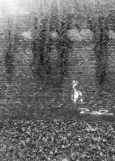 Brick Wall Outdoors Day No People Architecture Nature Ivy Graffiti Blackandwhite Black And White Leaves Backgrounds Background Texture Pattern Autumn