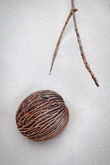 High angle view of wicker basket on white background