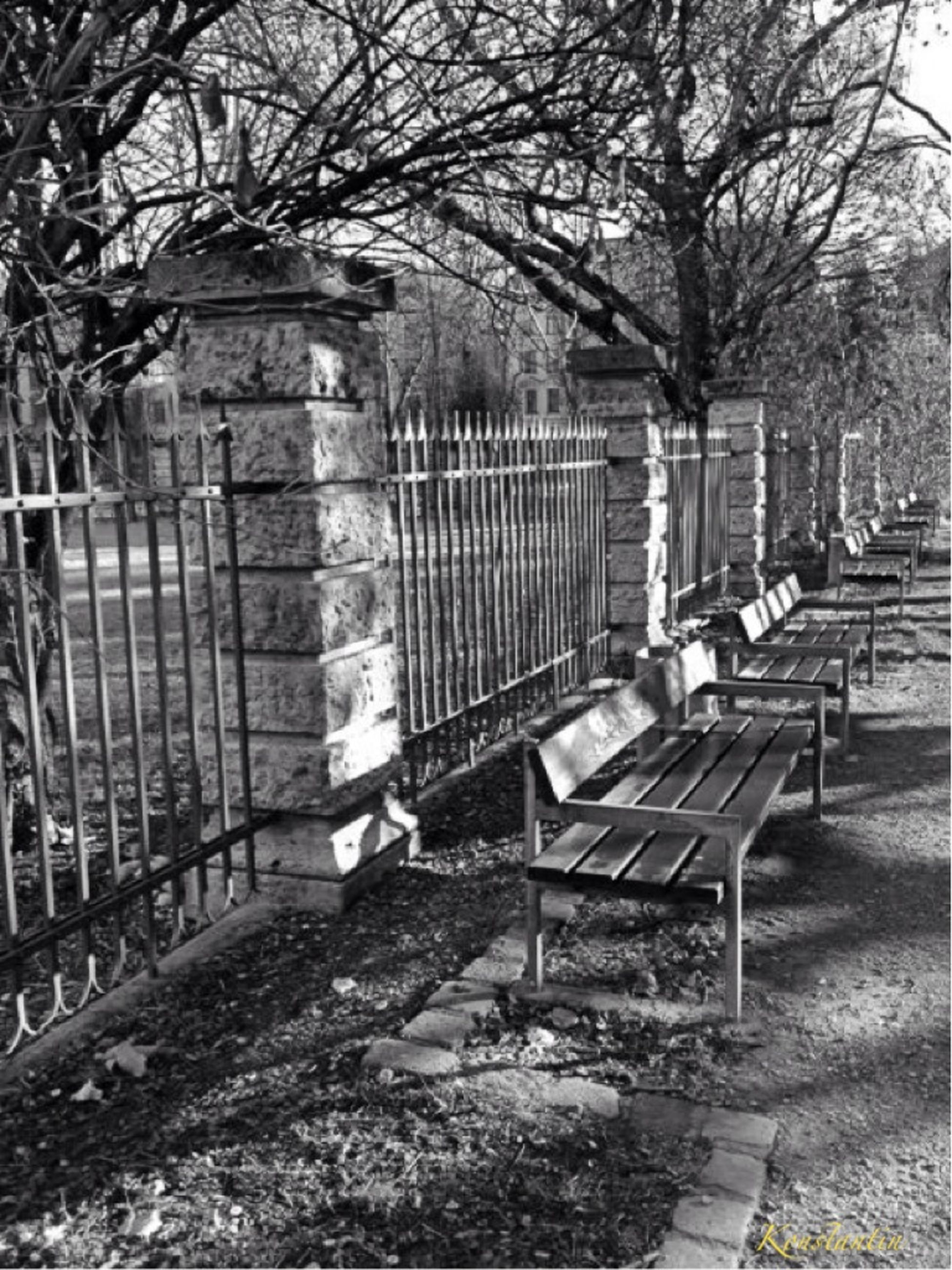 built structure, architecture, tree, building exterior, bench, park - man made space, steps, empty, absence, day, sunlight, footpath, railing, outdoors, shadow, the way forward, gate, no people, cemetery, wood - material