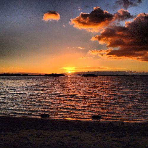Enjoying Sunset