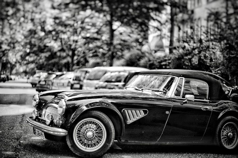 Oldtimer Black And White Oldtimer Mode Of Transportation Transportation Land Vehicle Car Motor Vehicle Day Focus On Foreground Selective Focus Tree No People Nature Outdoors Plant Retro Styled City Vintage Car History The Past Vignette The Street Photographer - 2018 EyeEm Awards