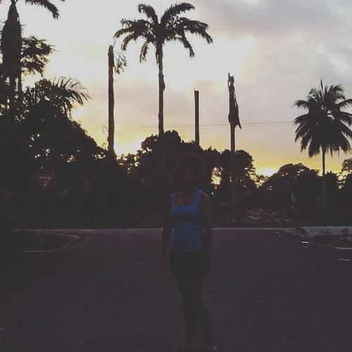 Sunsets and Palm trees