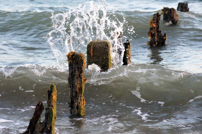 The sea splashing against a breakwater post. Water Sea Wave Motion Motion Capture Capture The Moment Flowing Water Breaking Splashing Tide Ocean Weather Environment Wood - Material Post Wooden Post Breakwater Damaged And Wrecked Eroded Salt Water Remains History Old Dated Seaweed Barnicles Beach Seaside No People Nature Beauty In Nature Scenics Nature Power In Nature Fragility Day Outdoors High Angle View Selective Focus Full Frame Front View
